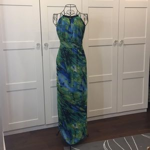 Fitted and Lined Maxi Dress